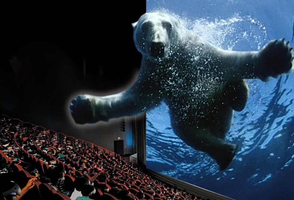 bear-imax