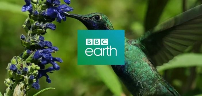 BBC Earth partners with Oculus to produce wildlife VR content